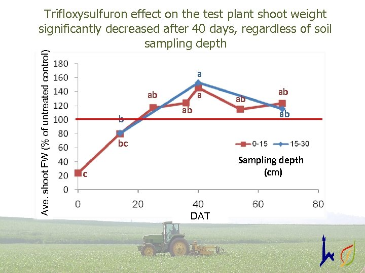 Ave. shoot FW (% of untreated control) Trifloxysulfuron effect on the test plant shoot