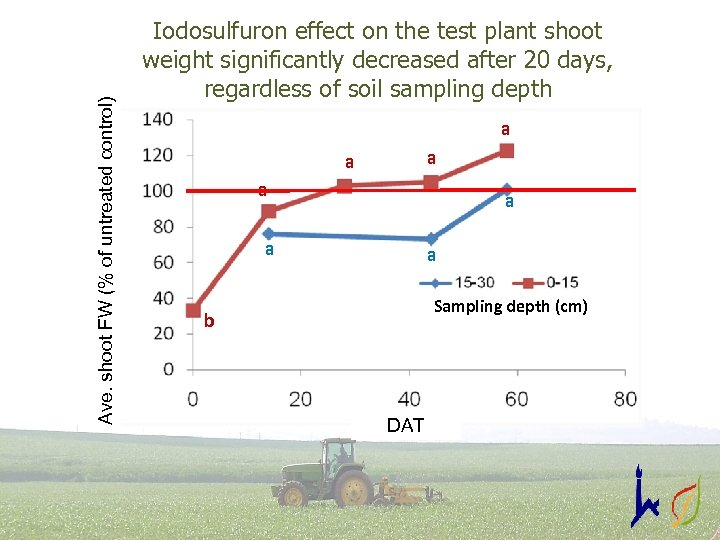 Ave. shoot FW (% of untreated control) Iodosulfuron effect on the test plant shoot