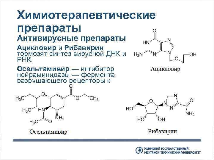 Химиотерапевтические препараты Антивирусные препараты Ацикловир и Рибавирин тормозят синтез вирусной ДНК и РНК. Осельтамивир