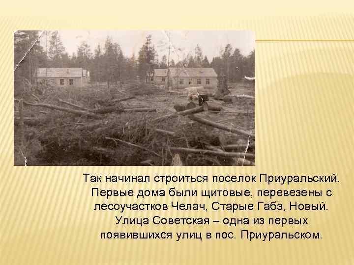 Так начинал строиться поселок Приуральский. Первые дома были щитовые, перевезены с лесоучастков Челач, Старые