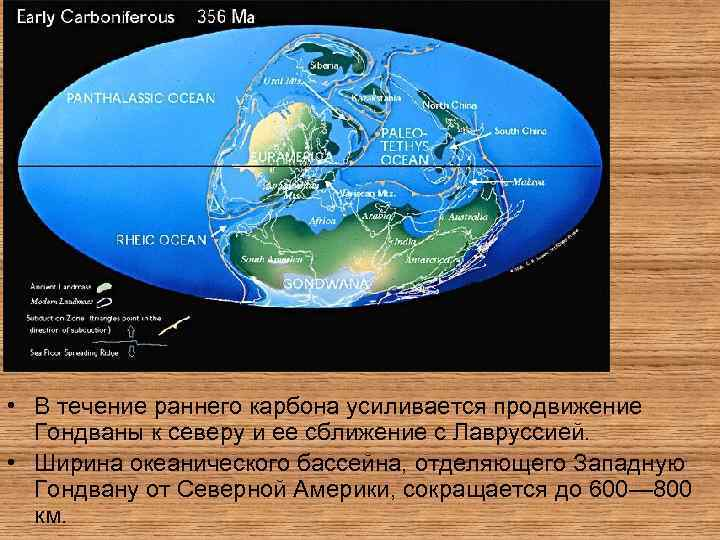 • В течение раннего карбона усиливается продвижение Гондваны к северу и ее сближение