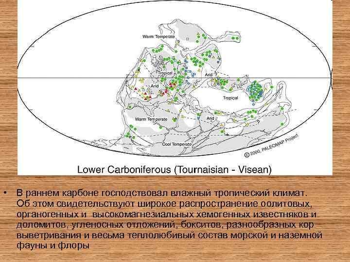 • В раннем карбоне господствовал влажный тропический климат. Об этом свидетельствуют широкое распространение