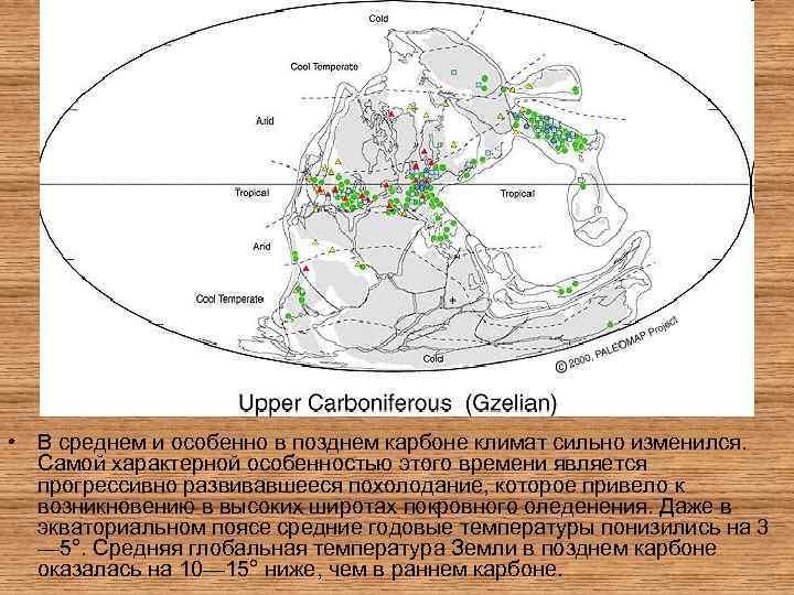 • В среднем и особенно в позднем карбоне климат сильно изменился. Самой характерной