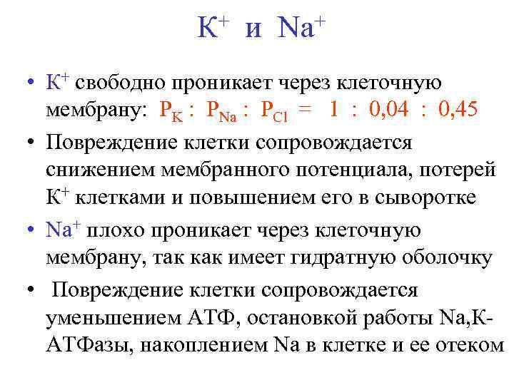 + и Na+ К • К+ свободно проникает через клеточную мембрану: РK : РNa