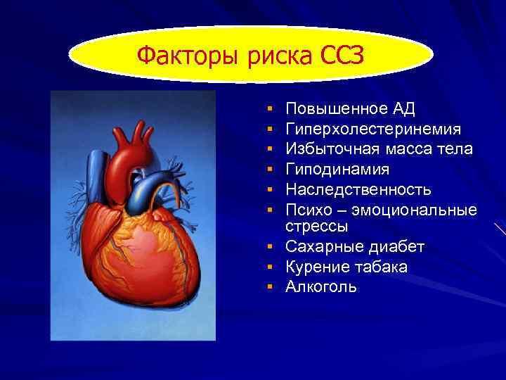Факторы риска ССЗ § § § § § Повышенное АД Гиперхолестеринемия Избыточная масса тела