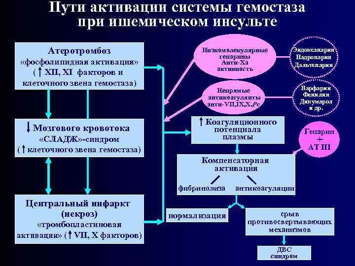 Пути активации системы гемостаза при ишемическом инсульте Атеротромбоз «фосфолипидная активация» ( XII, XI факторов
