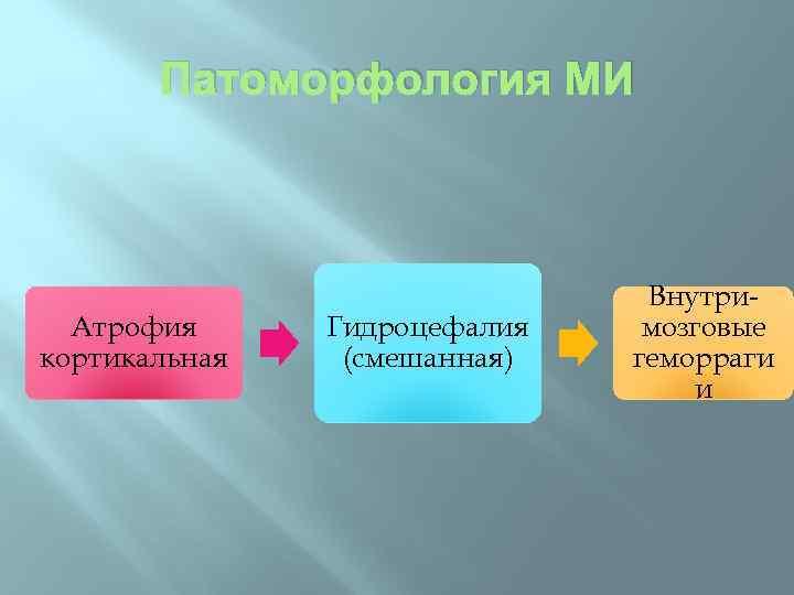 Патоморфология МИ Атрофия кортикальная Гидроцефалия (смешанная) Внутримозговые геморраги и