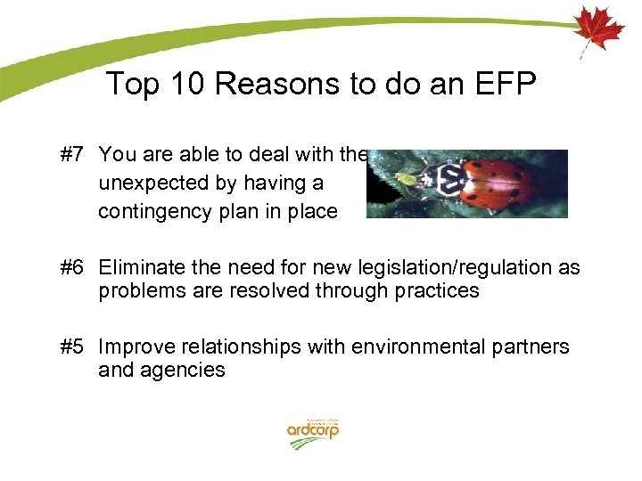 Top 10 Reasons to do an EFP #7 You are able to deal with