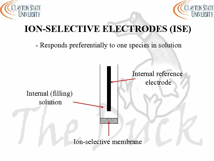 ION-SELECTIVE ELECTRODES (ISE) - Responds preferentially to one species in solution Internal reference electrode