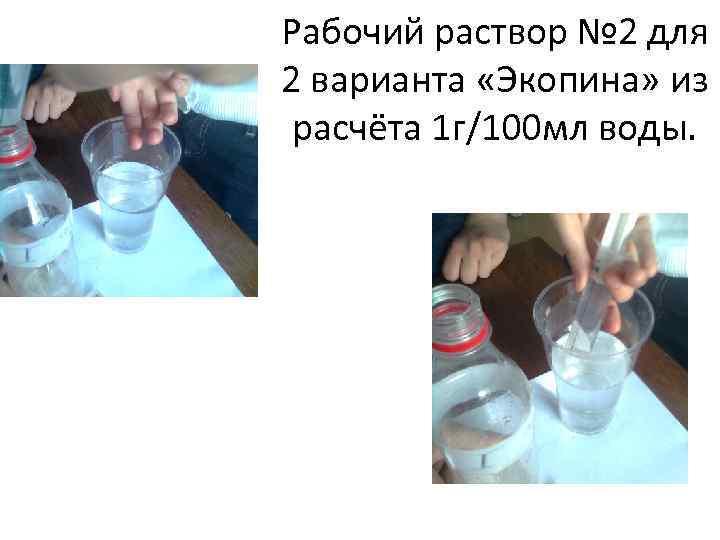 Рабочий раствор № 2 для 2 варианта «Экопина» из расчёта 1 г/100 мл воды.