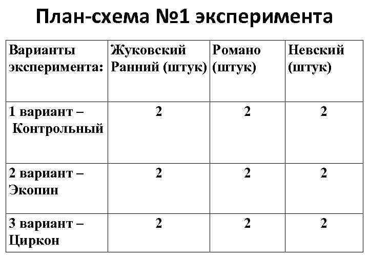 План-схема № 1 эксперимента Варианты Жуковский Романо эксперимента: Ранний (штук) Невский (штук) 1 вариант
