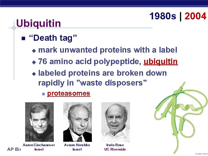 "1980 s | 2004 Ubiquitin ""Death tag"" mark unwanted proteins with a label u"