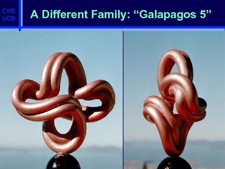 """CHS UCB A Different Family: """"Galapagos 5"""""""