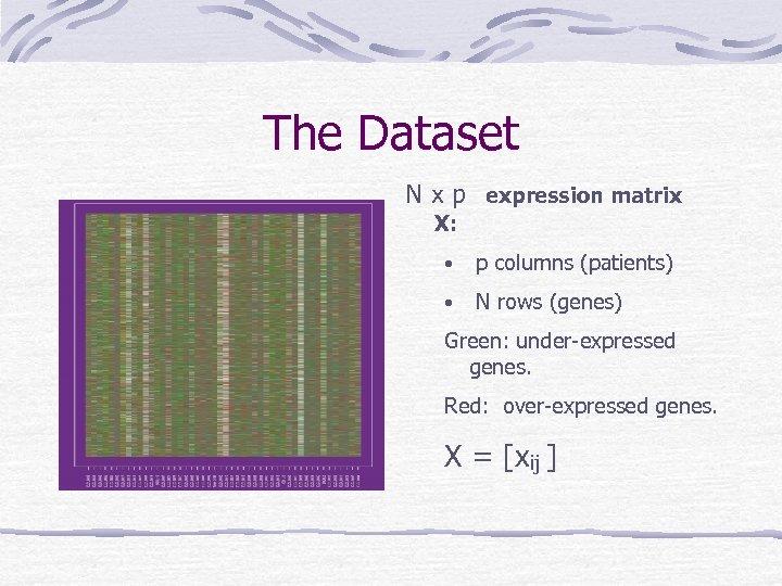 The Dataset N x p expression matrix X: • p columns (patients) • N