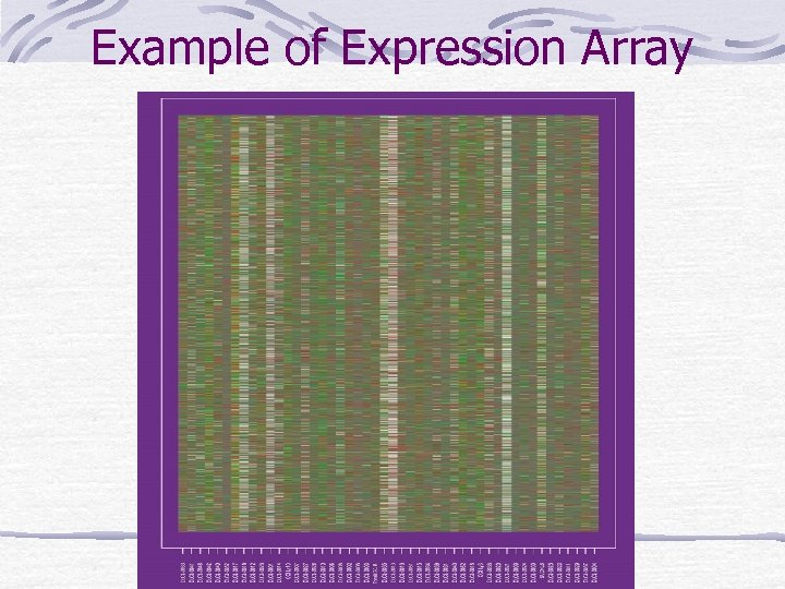 Example of Expression Array