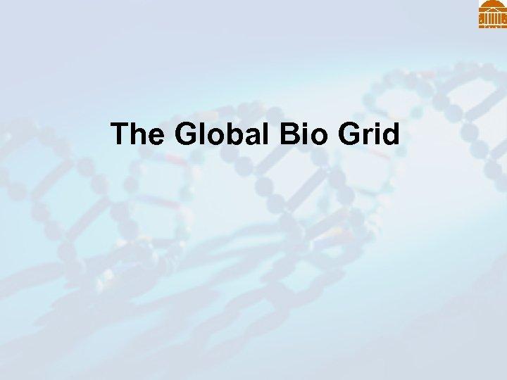 The Global Bio Grid