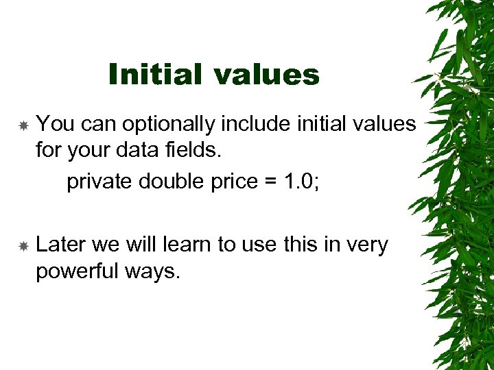 Initial values You can optionally include initial values for your data fields. private double