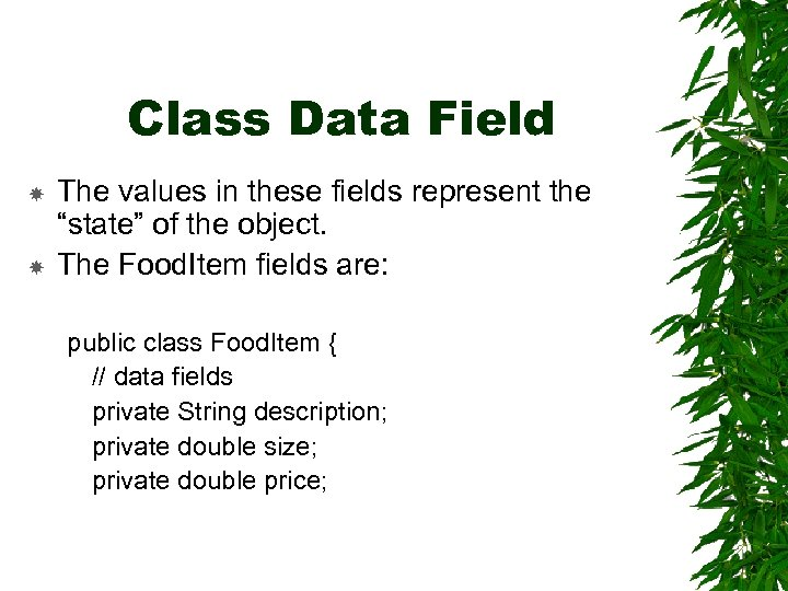 """Class Data Field The values in these fields represent the """"state"""" of the object."""