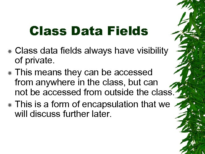 Class Data Fields Class data fields always have visibility of private. This means they
