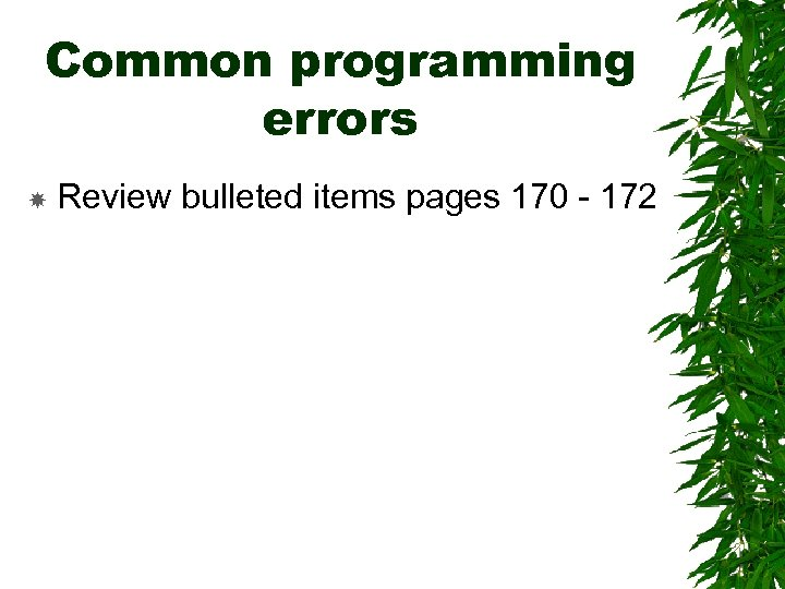 Common programming errors Review bulleted items pages 170 - 172