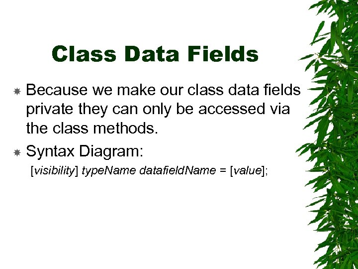 Class Data Fields Because we make our class data fields private they can only