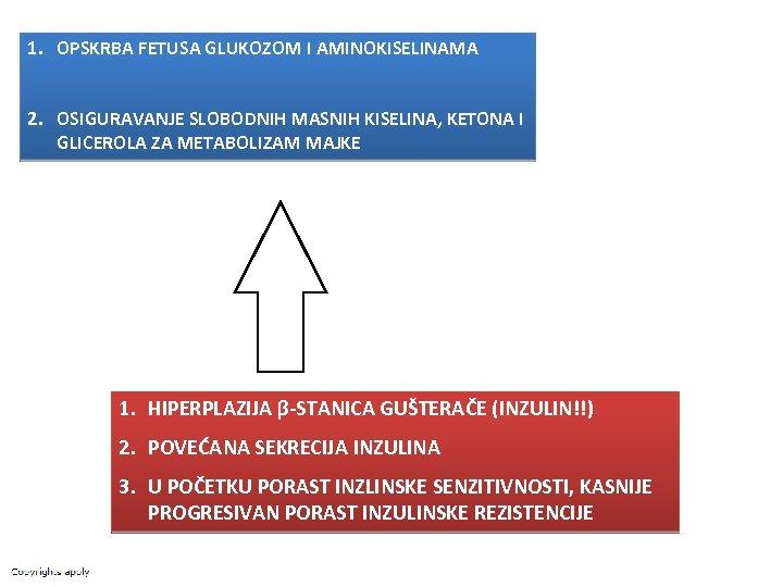 1. OPSKRBA FETUSA GLUKOZOM I AMINOKISELINAMA 2. OSIGURAVANJE SLOBODNIH MASNIH KISELINA, KETONA I GLICEROLA