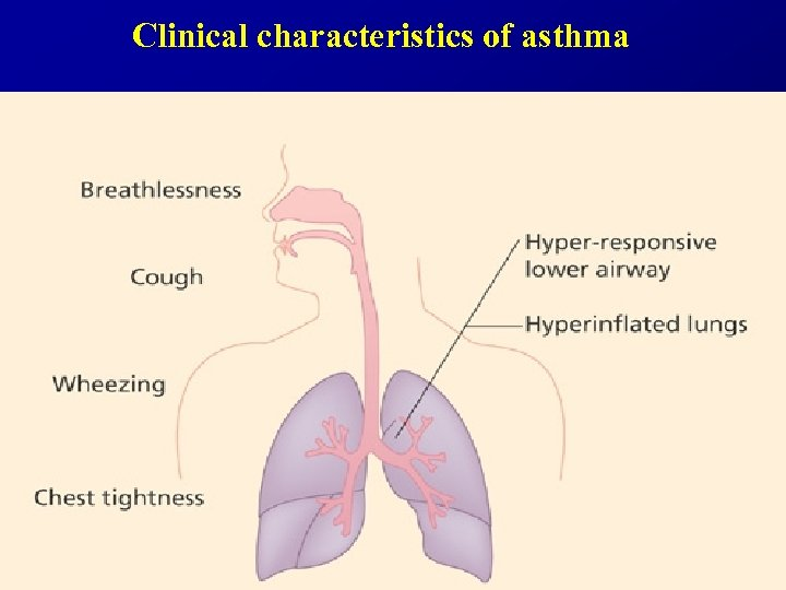 Clinical characteristics of asthma