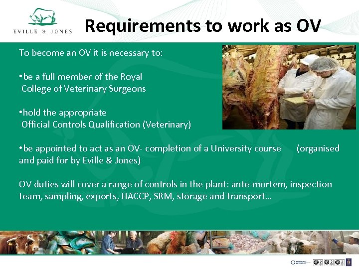 Requirements to work as OV To become an OV it is necessary to: •