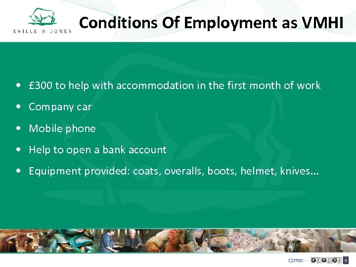 Conditions Of Employment as VMHI • £ 300 to help with accommodation in the