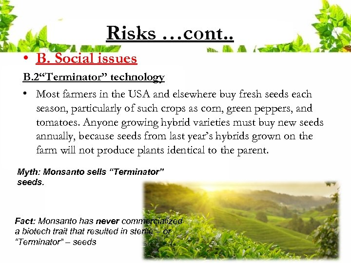 """Risks …cont. . • B. Social issues B. 2""""Terminator"""" technology • Most farmers in"""