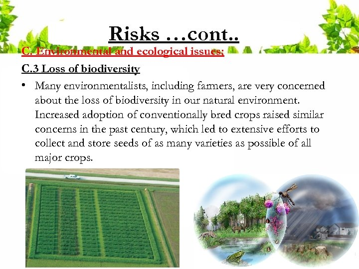 Risks …cont. . C. Environmental and ecological issues; C. 3 Loss of biodiversity •