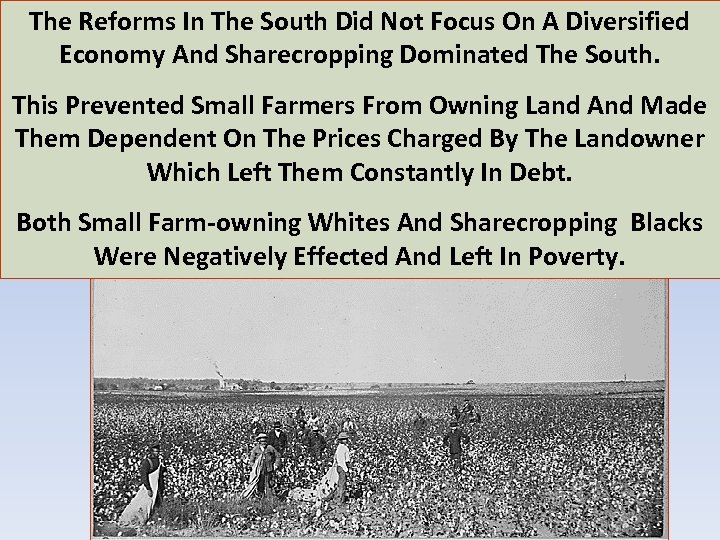 The Reforms In The South Did Not Focus On A Diversified Economy And Sharecropping