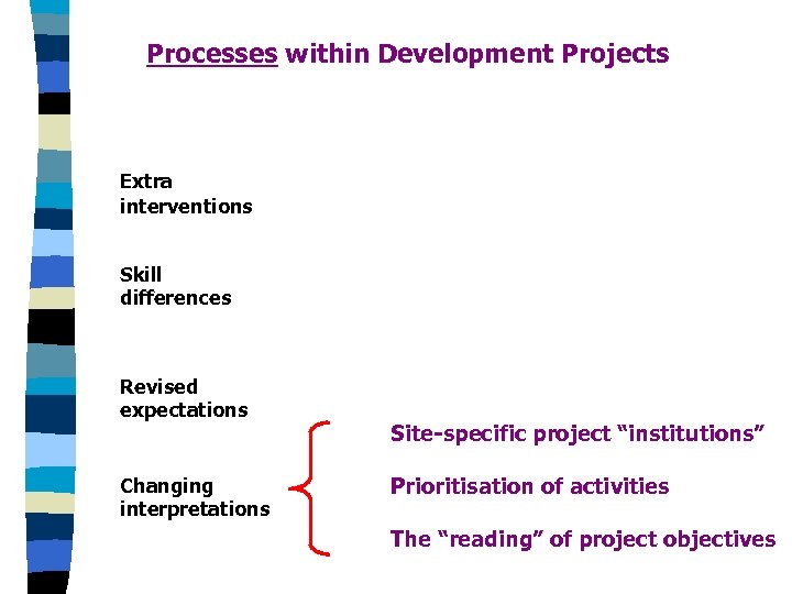 Processes within Development Projects Extra interventions Skill differences Revised expectations Changing interpretations Site-specific project