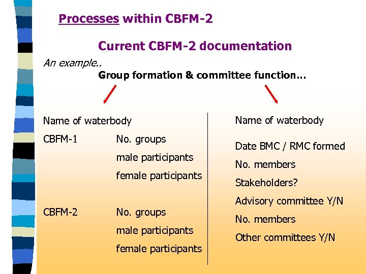 Processes within CBFM-2 Current CBFM-2 documentation An example. . Group formation & committee function.