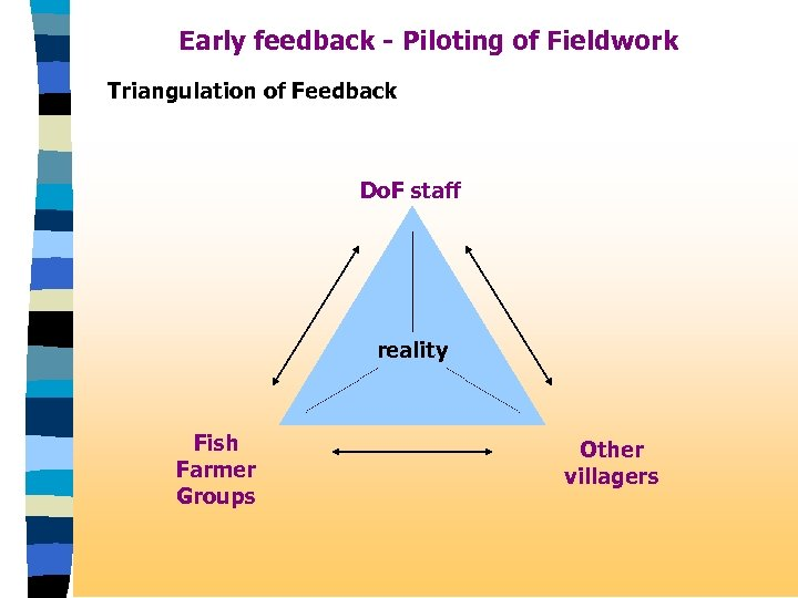 Early feedback - Piloting of Fieldwork Triangulation of Feedback Do. F staff reality Fish