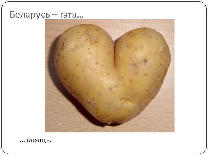 Беларусь – гэта… … кахаць.