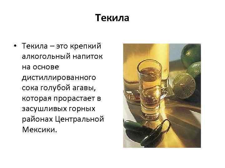 Текила • Текила – это крепкий алкогольный напиток на основе дистиллированного сока голубой агавы,