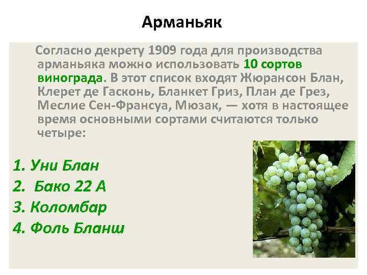 Арманьяк Согласно декрету 1909 года для производства арманьяка можно использовать 10 сортов винограда. В