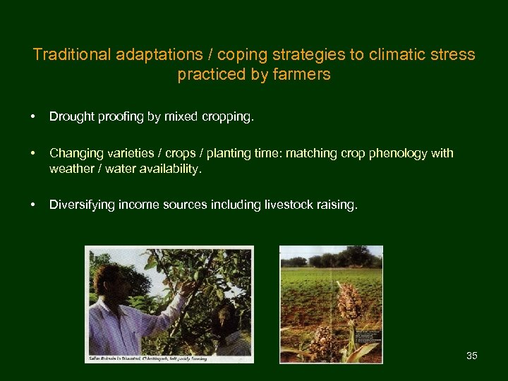 Traditional adaptations / coping strategies to climatic stress practiced by farmers • Drought proofing