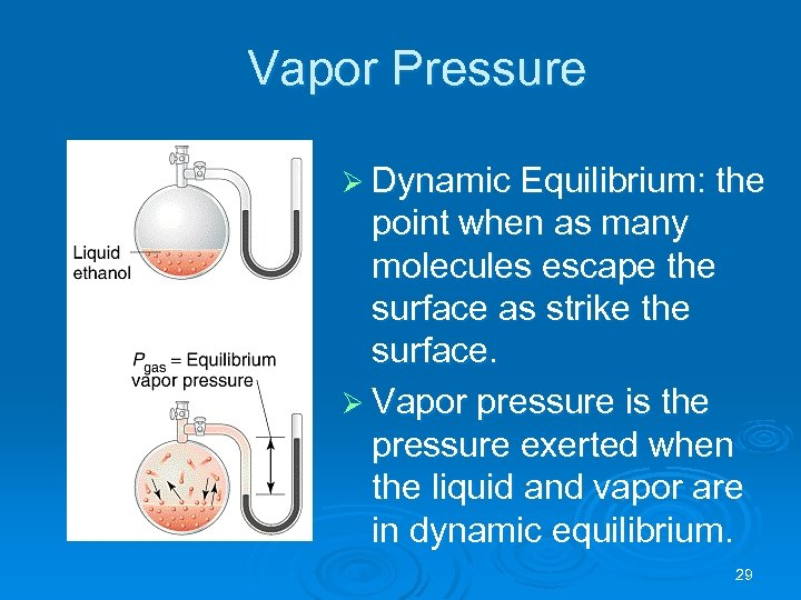 Vapor Pressure Ø Dynamic Equilibrium: the point when as many molecules escape the surface