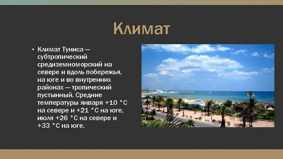 Климат ▪ Климат Туниса — субтропический средиземноморский на севере и вдоль побережья, на юге