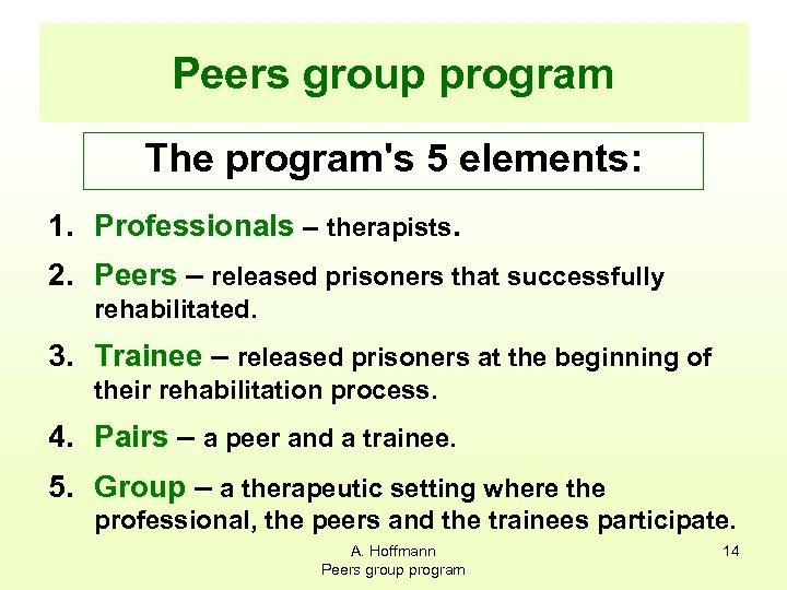 Peers group program The program's 5 elements: 1. Professionals – therapists. 2. Peers –