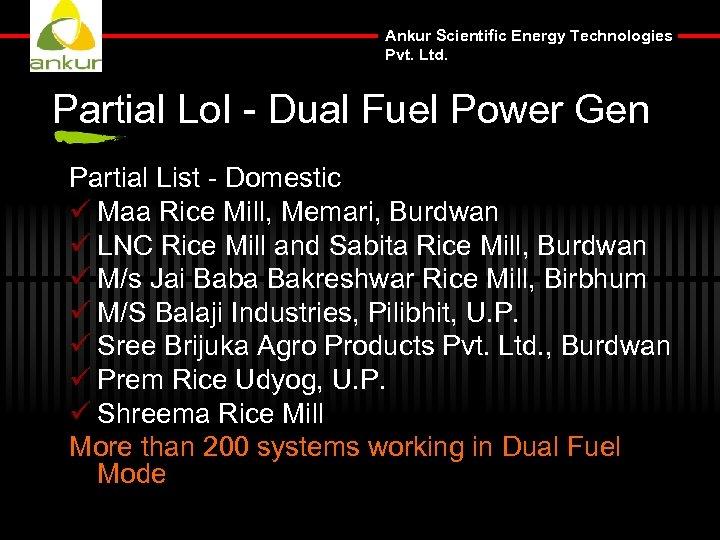 Ankur Scientific Energy Technologies Pvt. Ltd. Partial Lo. I - Dual Fuel Power Gen
