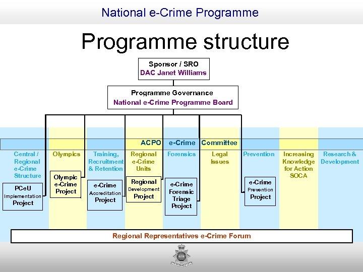 National e-Crime Programme structure Sponsor / SRO DAC Janet Williams Programme Governance National e-Crime