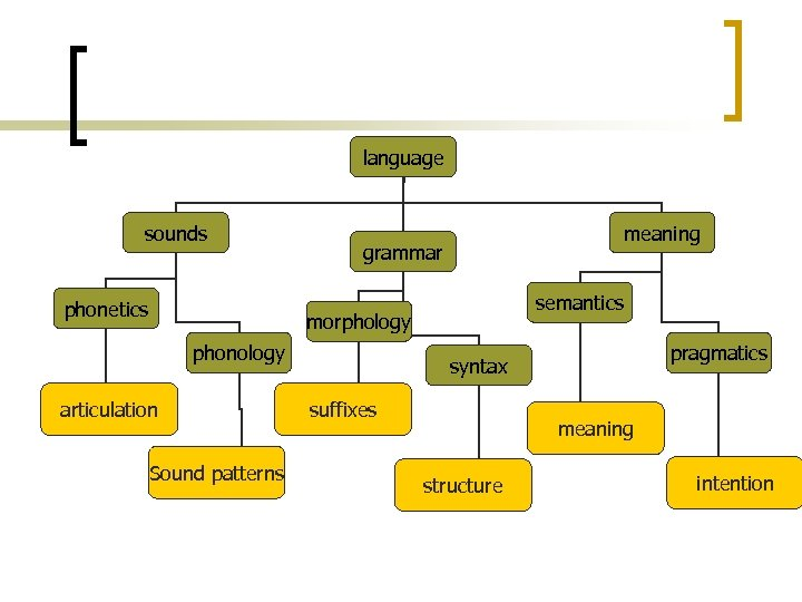 A nyelv szerkezete language sounds phonetics meaning grammar semantics morphology phonology articulation Sound patterns