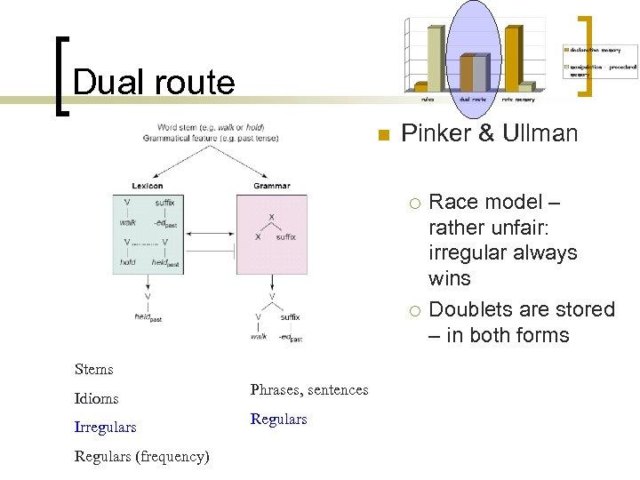 Dual route n Pinker & Ullman ¡ ¡ Stems Idioms Irregulars Regulars (frequency) Phrases,