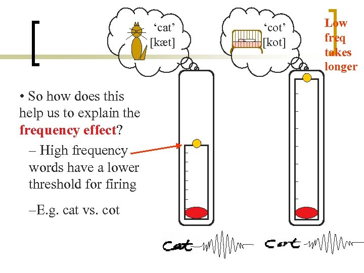 'cat' [kæt] • So how does this help us to explain the frequency effect?
