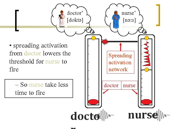 'doctor' [doktə] • spreading activation from doctor lowers the threshold for nurse to fire