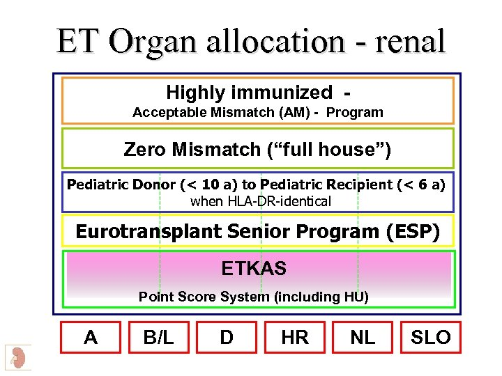 ET Organ allocation - renal Highly immunized Acceptable Mismatch (AM) - Program Zero Mismatch