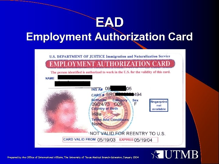 EAD Employment Authorization Card Prepared by the Office of International Affairs, The University of